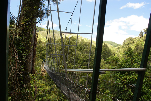 Swing bridge at Waiohine Gorge